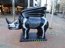 DO Rhino